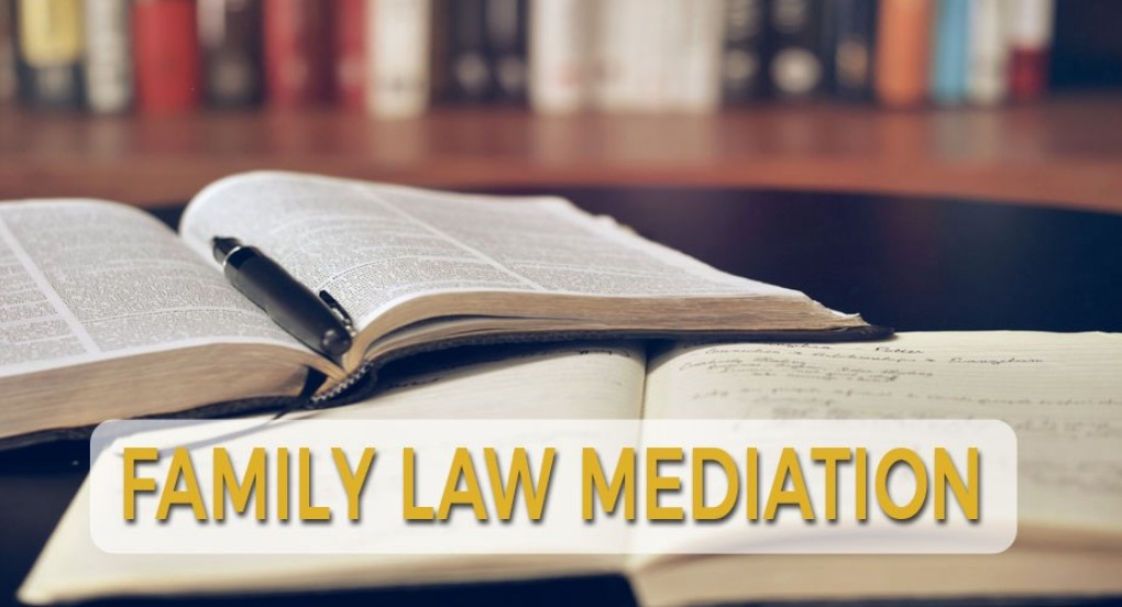 Cases in Family Law